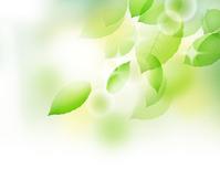 Leaf Fuwari light white [4328798] Leaf