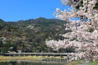 Togetsukyo Bridge Stock photo [4338549] Togetsukyo