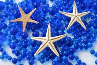 Starfish Stock photo [142679] Starfish