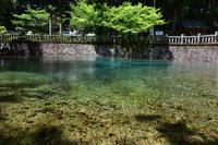 Beppu Benten IkeYumizu Stock photo [4407350] Yamaguchi