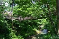 Vine bridge Stock photo [4571680] suspension