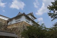 Tsuyama Castle Btsutyuu tower Stock photo [4703260] Heshan