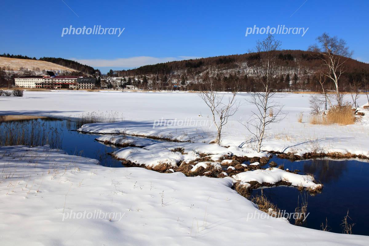 冬の長野県白樺湖 写真素材 4863022 フォトライブラリー