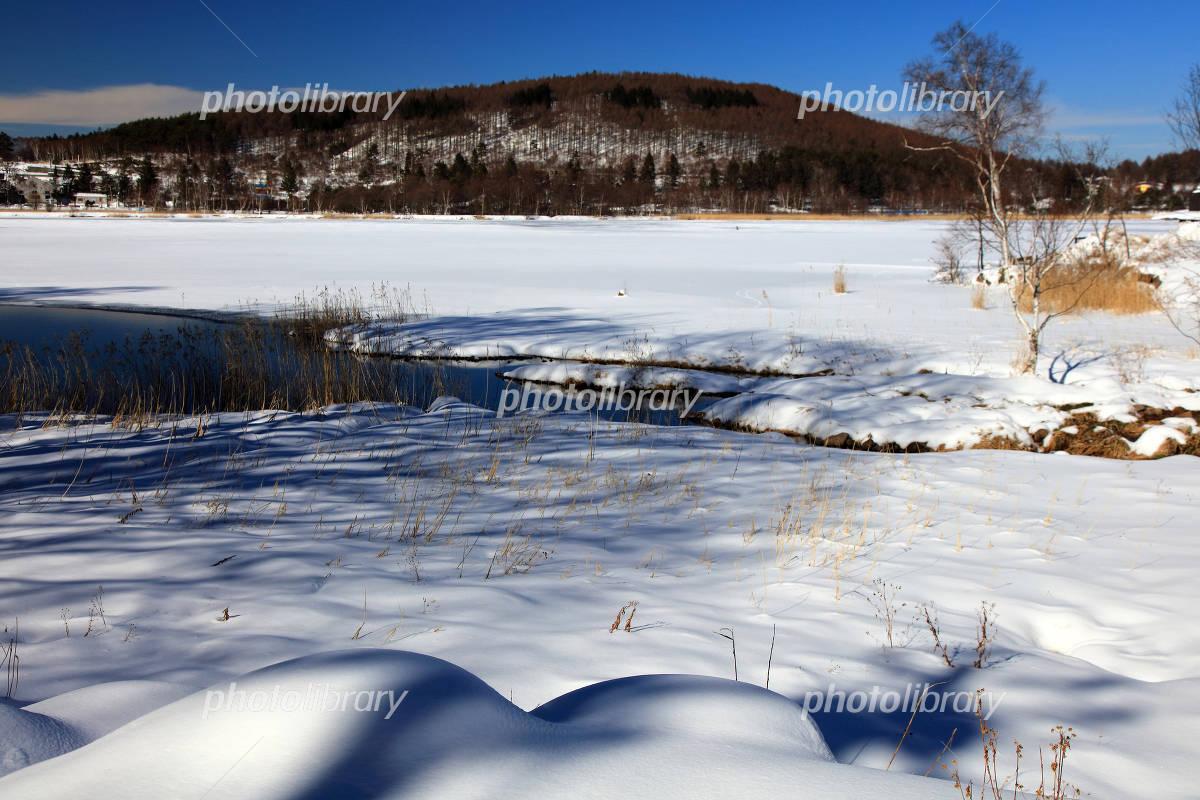 冬の長野県白樺湖 写真素材 4863108 フォトライブラリー