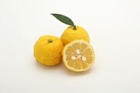 Yuzu citron citron Stock photo [4860365] Yuzuyu