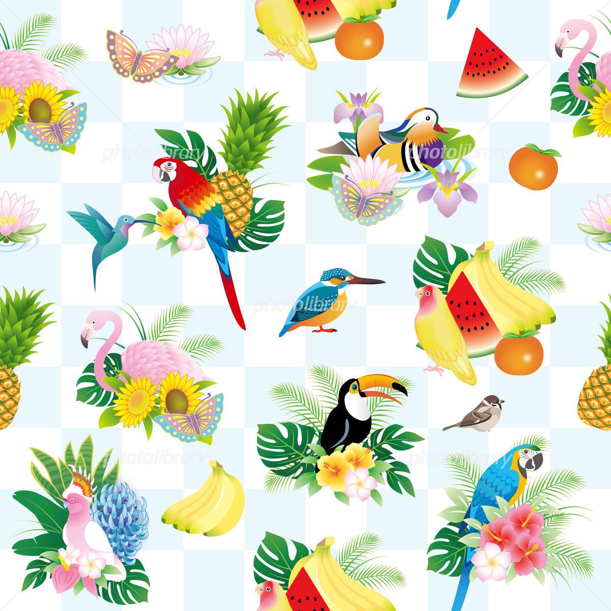 鳥と花 果物の夏イメージパターン イラスト素材 4967350 フォト
