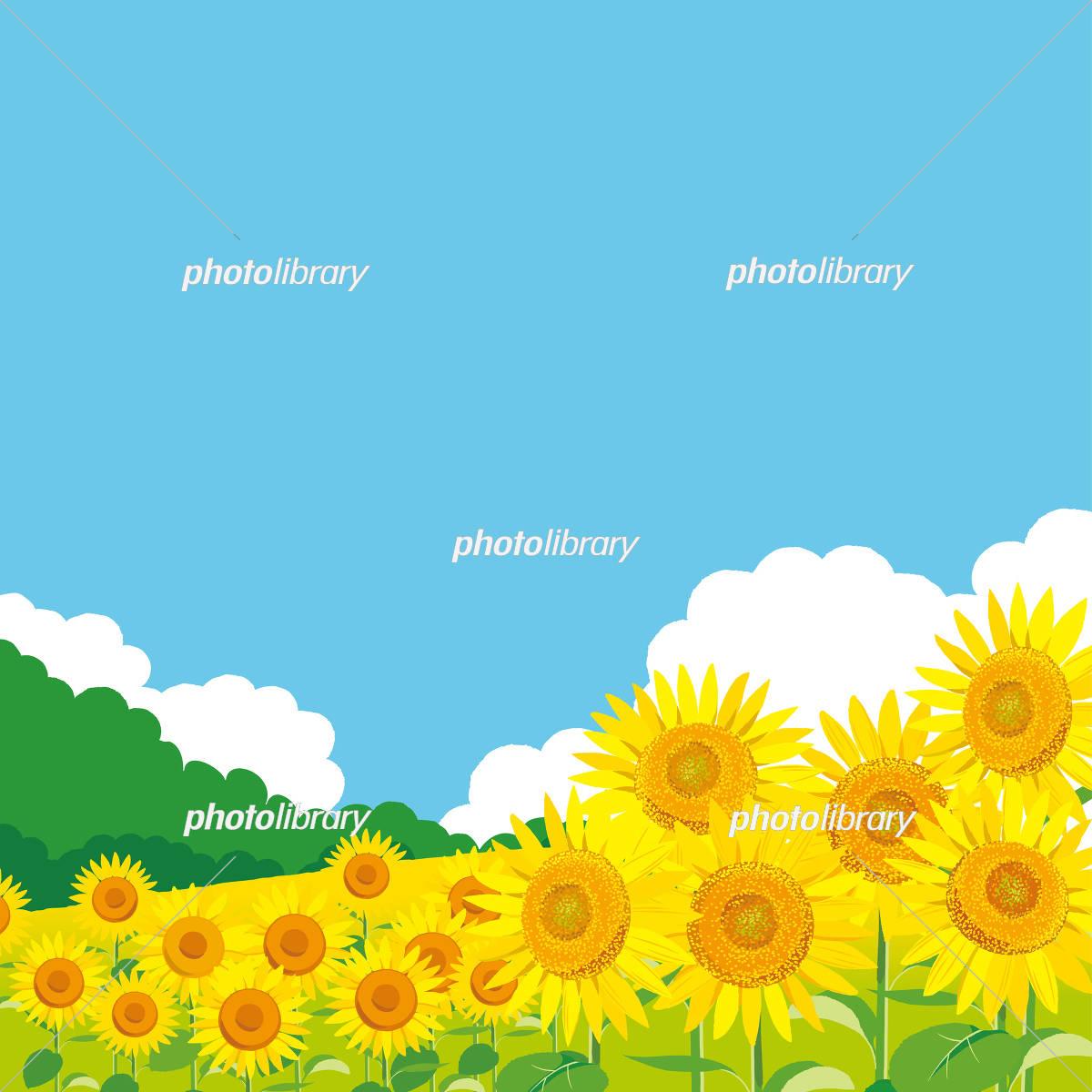 ひまわり 風景イラスト イラスト素材 5062265 フォトライブラリー