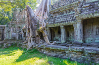 Ta Prohm Stock photo [5063036] Cambodia