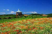 Flower land observatory Stock photo [166776] Hokkaido
