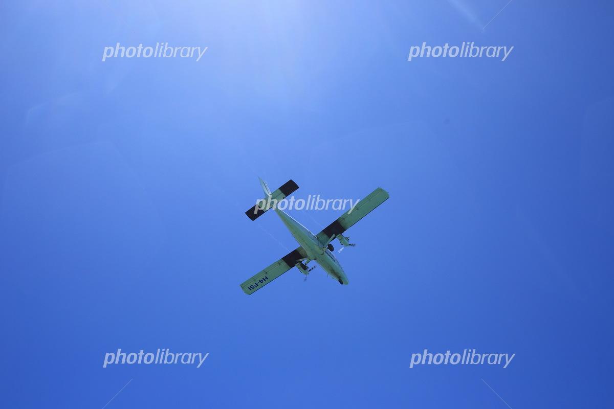 ソロモン航空 写真素材 [ 533722...