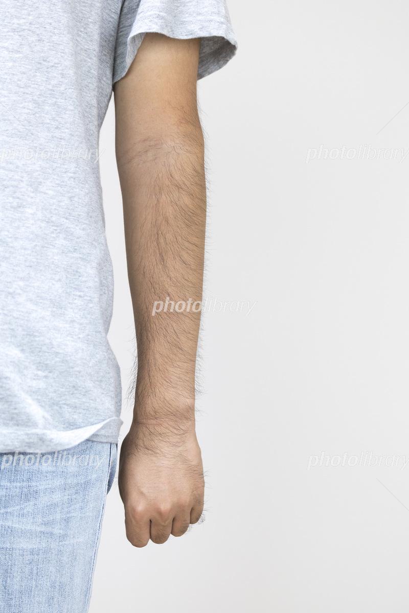 毛深い男性の左腕 写真素材 [ 54...