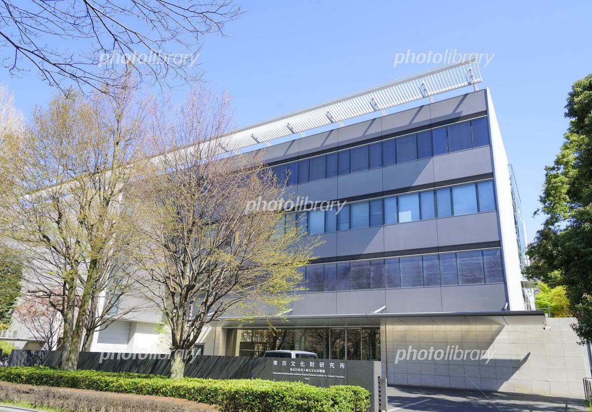 所 研究 東京 財 文化 東京文化財研究所が「文化財写真に関するワークショップ」を開催します。