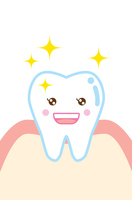 健康な歯と歯ぐきのイラスト character illustration of healthy tooth and gum 歯