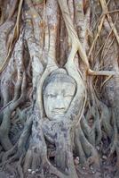 Ayutthaya Stock photo [242210] Thailand