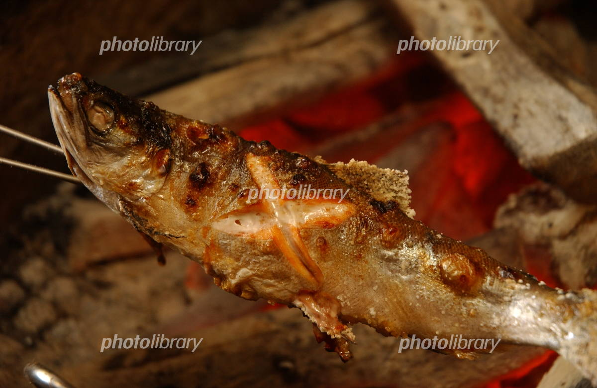 炉端焼きの画像 p1_5