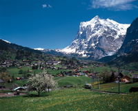 Switzerland Grindelwald Eiger Stock photo [459877] Switzerland