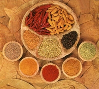 Spices Stock photo [507633] India