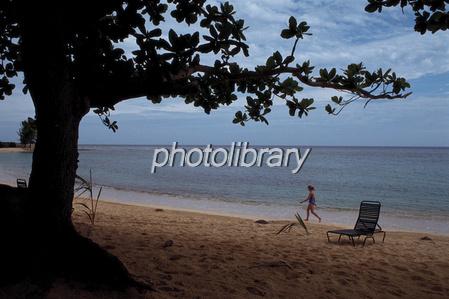 ジャマイカ ビーチ-写真素材  ジャマイカ ビーチ 画像ID 544046  ジャマイカ ビーチ