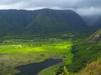 Hawaii Island of Waipio Valley Stock photo [543236] Hawaii