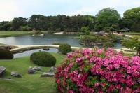 Okayama Korakuen Spring Stock photo [547693] Korakuen