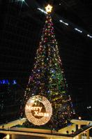 Huge Christmas tree in Kyoto Station Stock photo [670761] Christmas