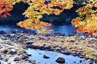 Autumn scenery, mountain stream with autumn leaves of Koarashi River Stock photo [671645] KaoruArashiKei