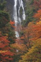 Kanba falls Stock photo [675829] Kanba