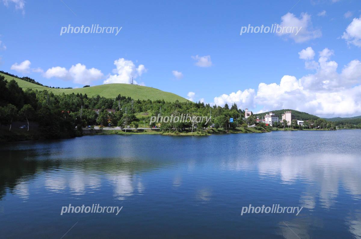 長野県 白樺湖と高原の緑と青空 写真素材 912844 フォトライブ
