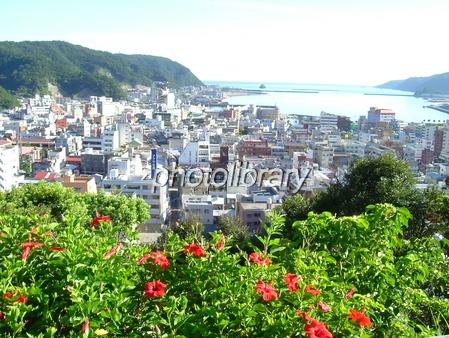Amami Naze city Photo