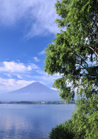 Kawaguchiko and Mount Fuji Stock photo [913513] Mt.