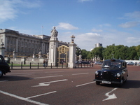 Buckingham Palace before the London taxi Stock photo [917028] London