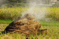 Mountain of burning straw Stock photo [1128124] Straw