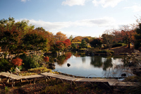 Happy village Japanese garden Stock photo [1130595] Japanese