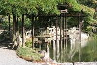 Sento Imperial Palace Yatsuhashi wisteria trellis of Stock photo [1133020] Sento