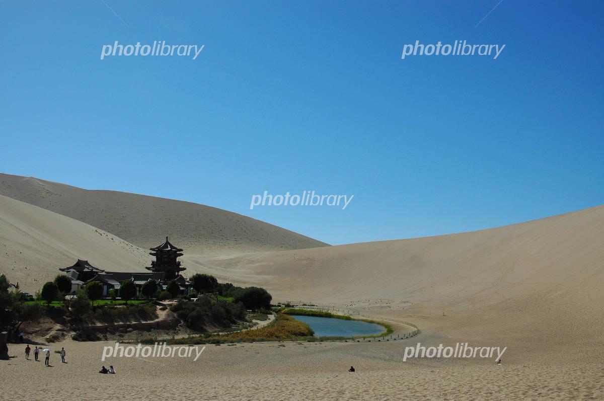 ゴビ 砂漠