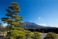 Sakurajima from Seniwao Garden Stock photo [1239882] Iso