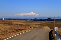 Spring farm road Stock photo [1331485] Yamagata