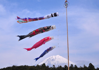 Carp and Mount Fuji Stock photo [1332579] Mt.