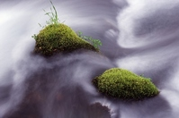 Flow of moss stone Stock photo [1332961] Spring