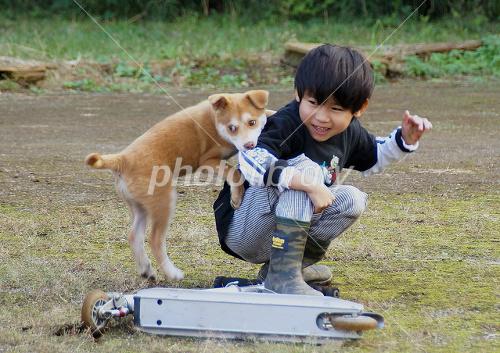 犬と遊ぶ子供の写真