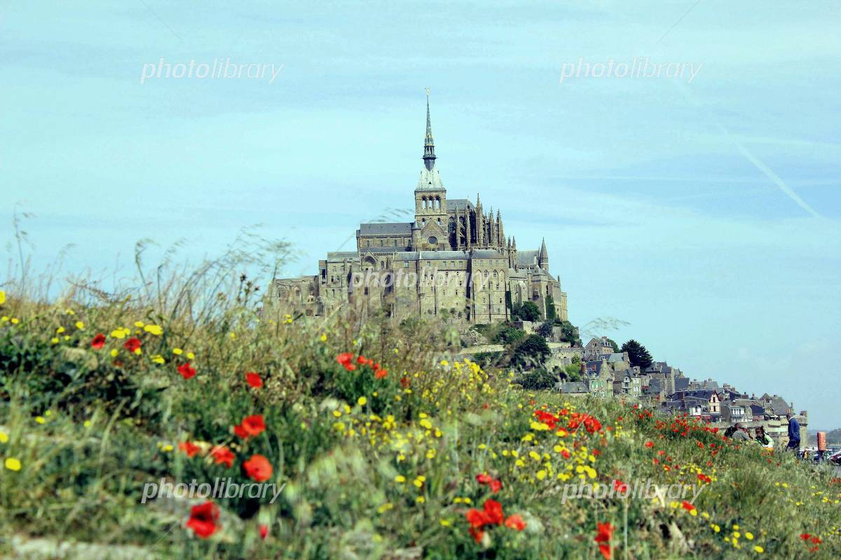 Mont-Saint-Michel and poppy Photo