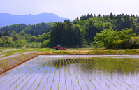 May the mountains of rice fields Stock photo [1408877] Yamagata