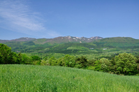 Landscape Mount Adatara of fresh green Stock photo [1412939] Fukushima