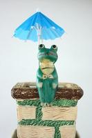 Frog doll Stock photo [1413138] Frog