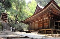 Two national treasure of women Takano Stock photo [1416213] Nara