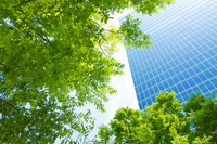 Fresh green and office building Stock photo [1419505] Fresh