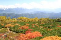 Norikura Kuraigahara Stock photo [1506467] Norikura