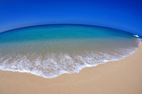 Oahu easternmost beach Stock photo [1512353] Yokohama