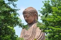 Shurakuen of Buddha Stock photo [1514475] Shurakuen