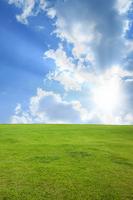 Grassland and blue sky Stock photo [1517952] Prairie